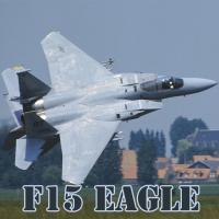 Game F15 Eagle Slide