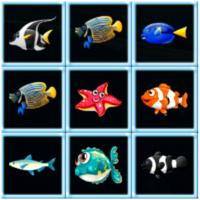 Game Fish Connections